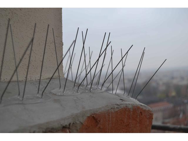 Top Protect zabezpieczenia przed ptakami kolce na gołębie siatki na balkon